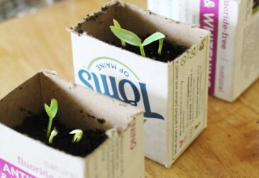 Find out how simple it is to make your own DIY seed starter pots with recycled items. You've probably seen those cute little biodegradable seed starter pots at the garden center, just sprout your seeds and then plant the whole thing into the ground! Very cool, but also really easy to make out of household items.