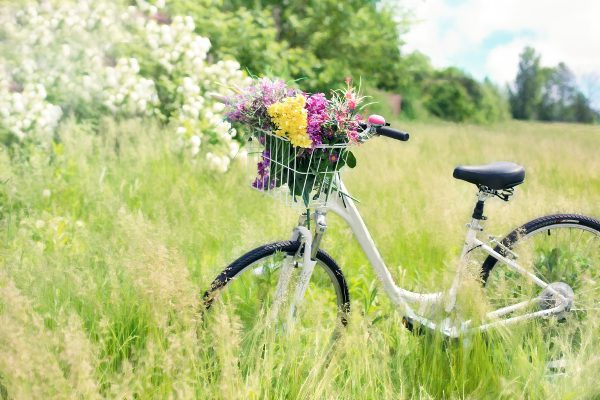 vintage bicycle in a spring meadow