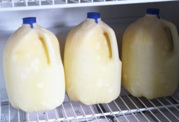 frozen milk gallons in the freezer
