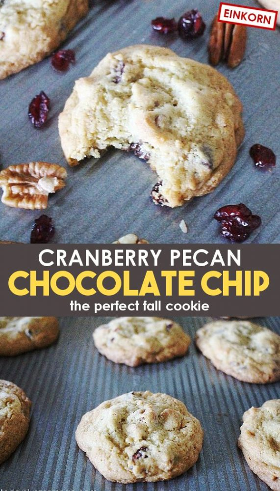 fall cookies with cranberries pecans and chocolate chips