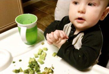 gaps diet with kids