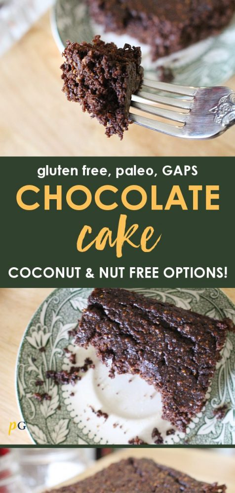 gaps diet and paleo chocolate cake