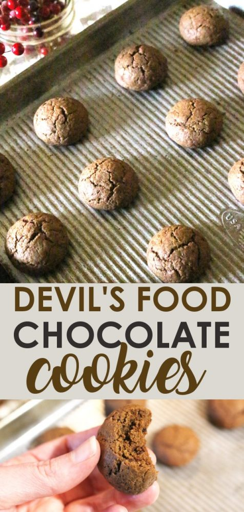 Devils Food Chocolate Cookies with chocolate chips