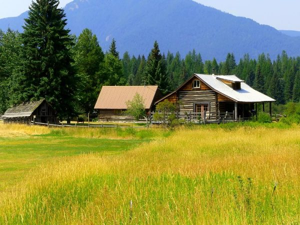 Living off the grid in a cabin in the field