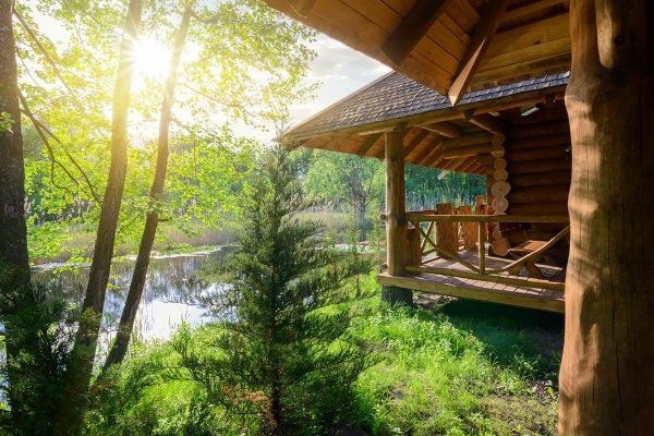 homestead off grid home in forest