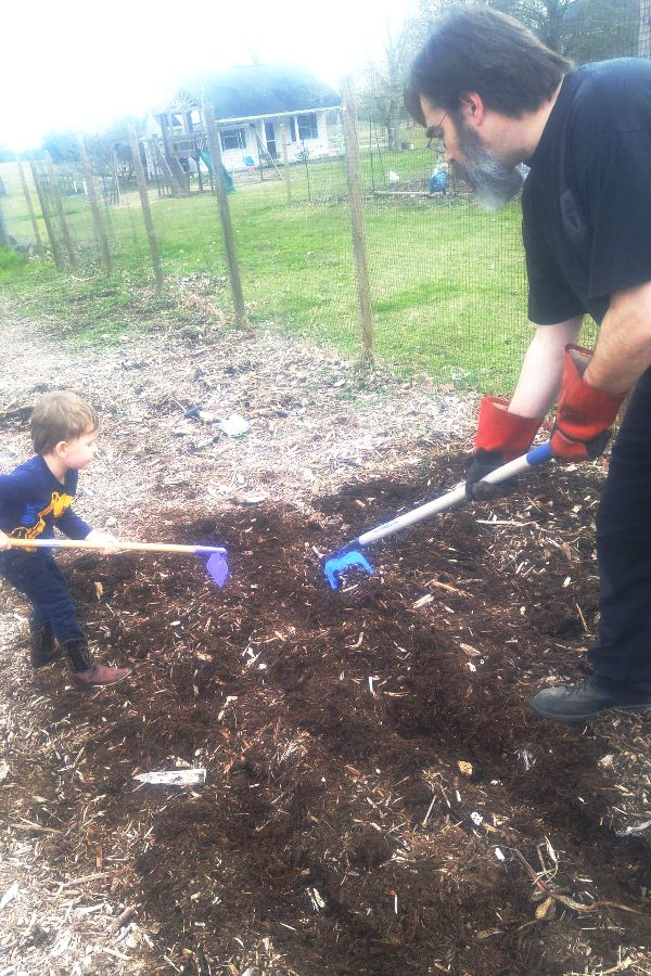 Applying homemade compost and fertilizer to a garden
