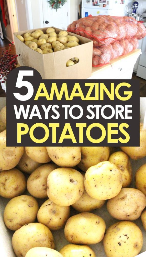 5 ways to store potatoes promo image