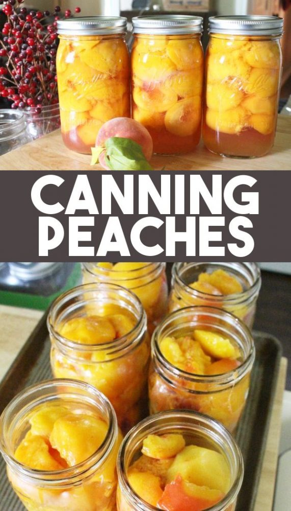 Canning peaches water bath canning recipe