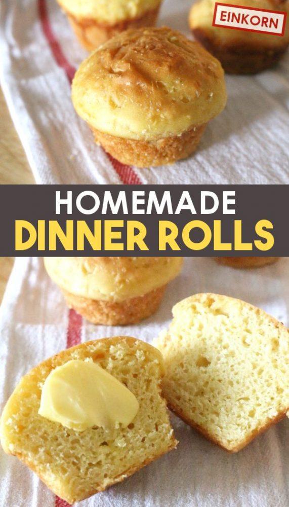 Easy buttery homemade dinner rolls recipe promo