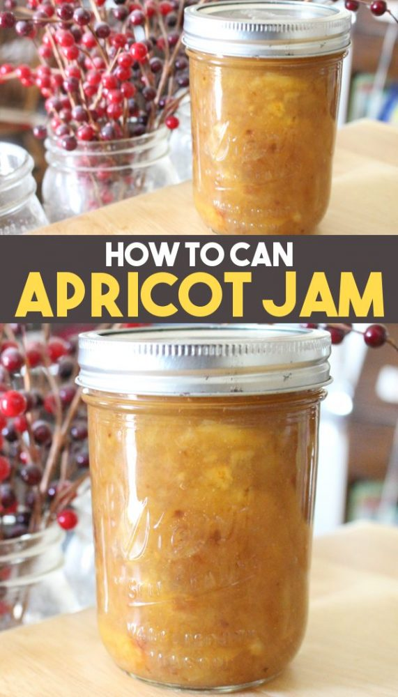 homemade apricot jam recipe promo image
