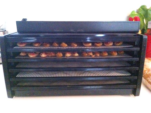 Best overall dehydrator for food preservation