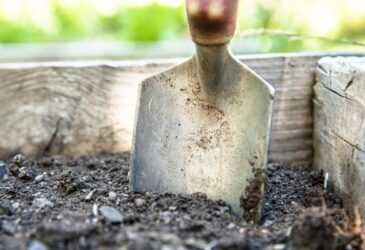 Soil and spade in a raised garden bed