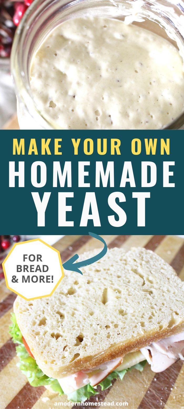 homemade sourdough starter for DIY yeast