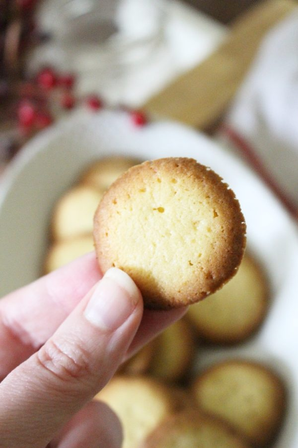 homemade vanilla wafer cookie recipe holding cookie up close