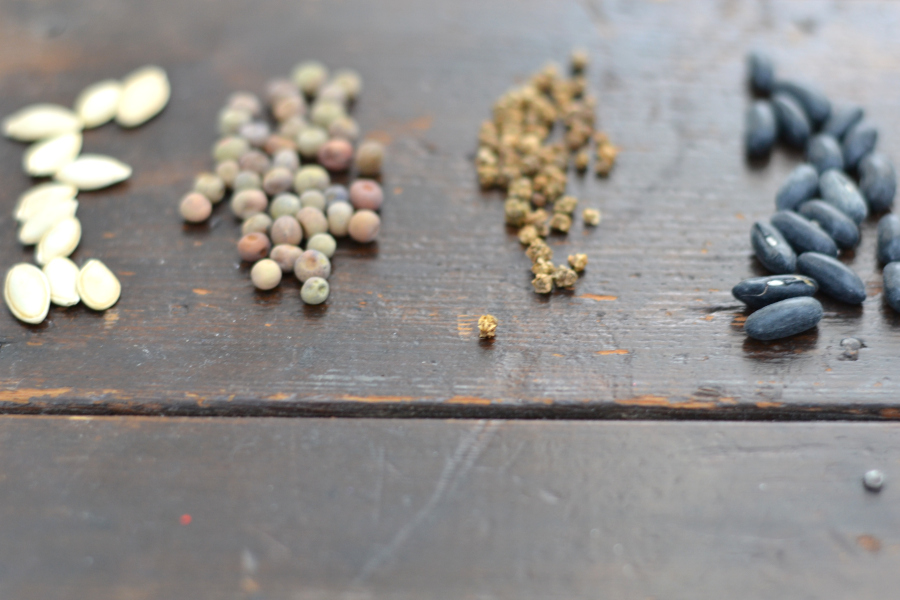 seeds sitting on a wood table