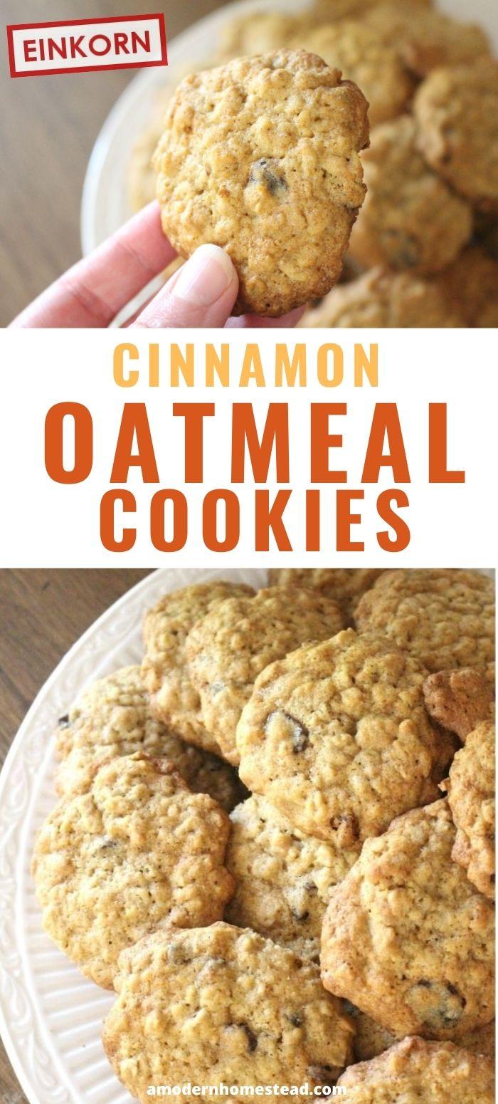 cinnamon oatmeal raisin cookies promo shot