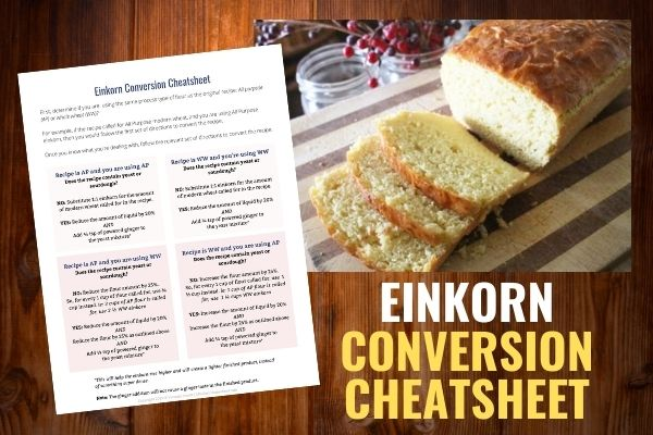einkorn conversion cheatsheet preview