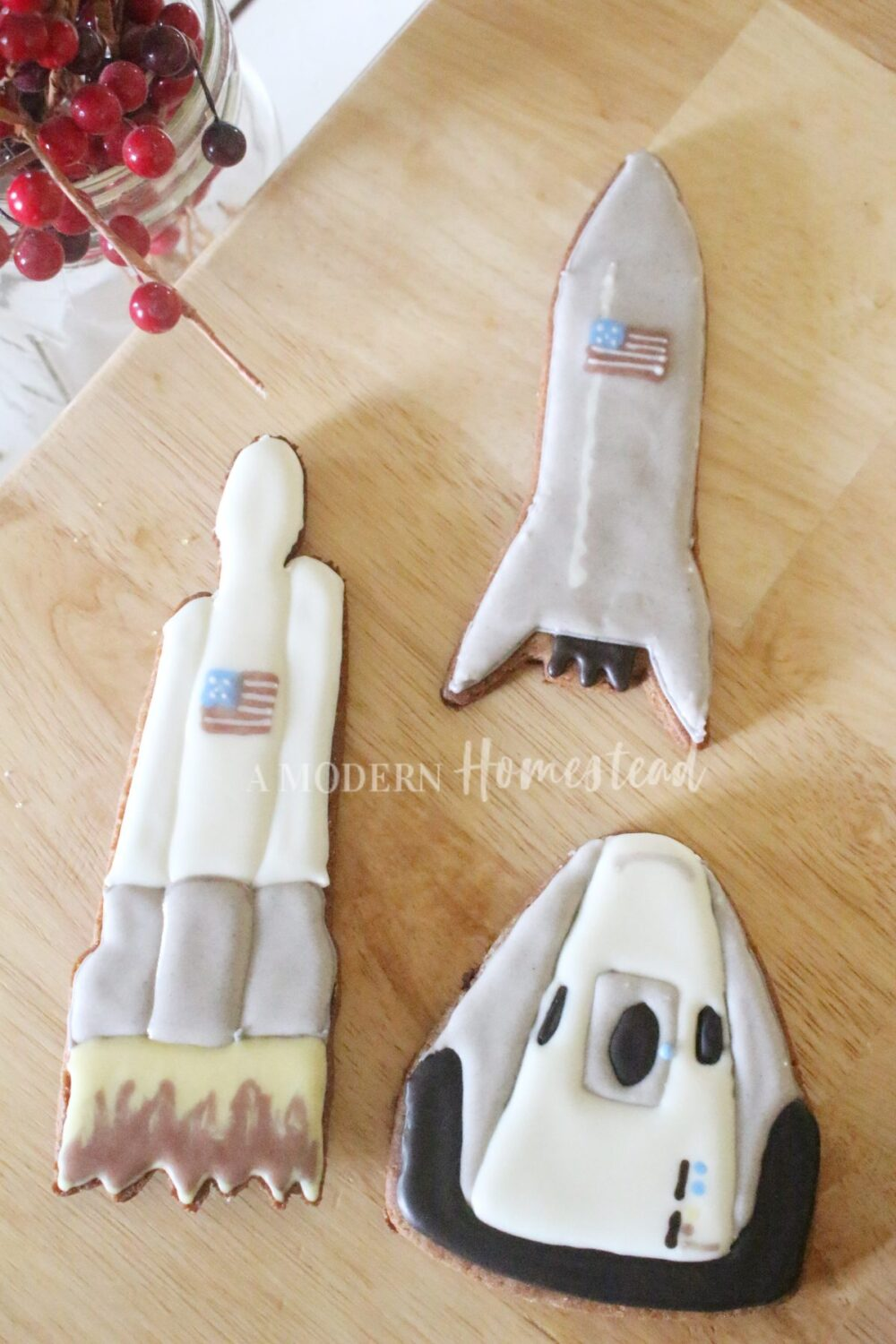 SpaceX Rocket Cookies Decorated with Homemade Royal Icing