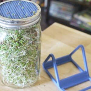 Mason jar with sprouting lid and a jar stand