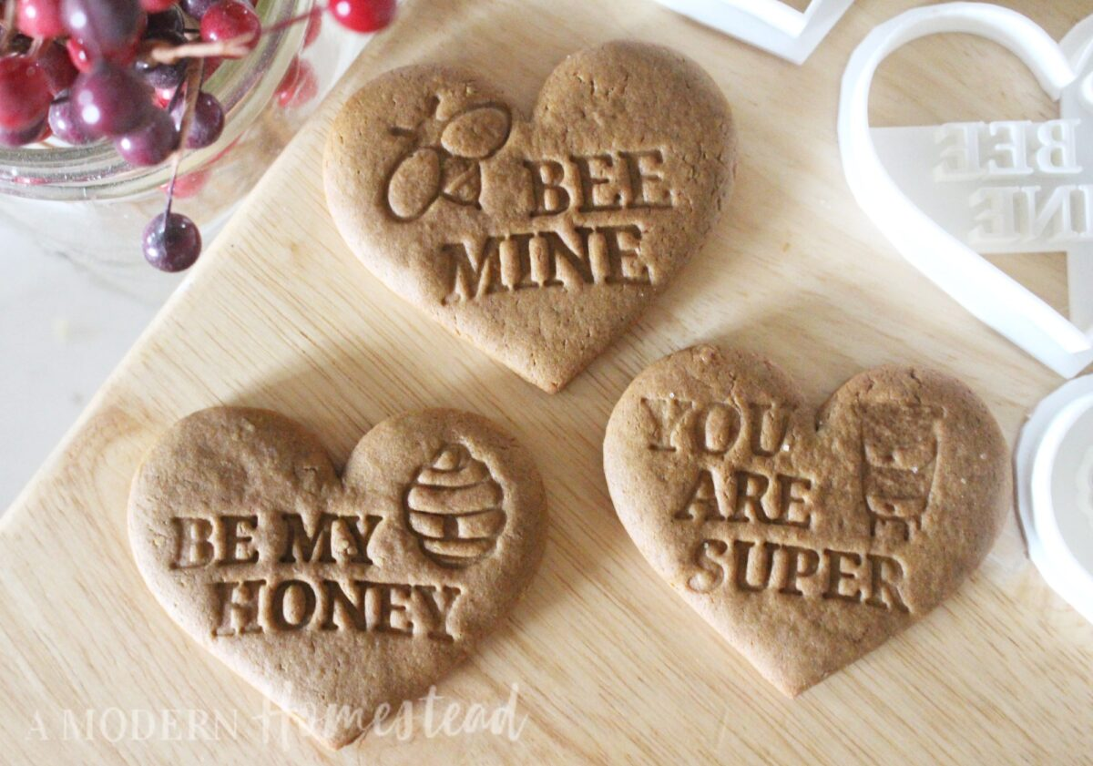 Set of 3 bee themed valentines day cookie cutters