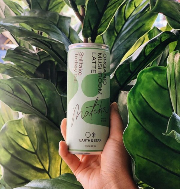Earth and Star Mushroom Matcha drink