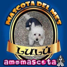 MASCOTA-DEL-MES-LULU
