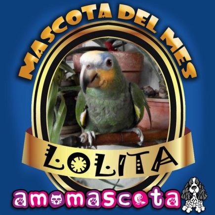 MASCOTA-DEL-MES-LOLITA