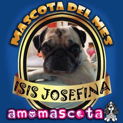 MASCOTA-DEL-MES-ISIS