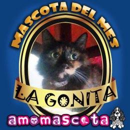 MASCOTA-DEL-MES-GONITA