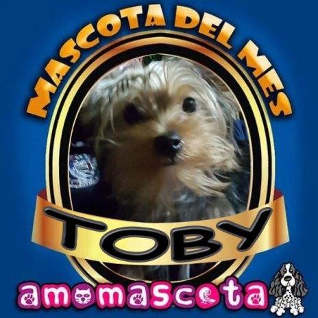 TOBY-MASCOTA-DEL-MES