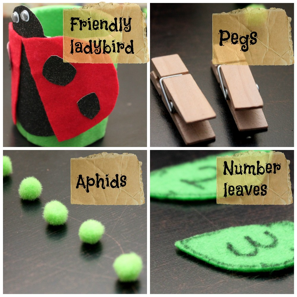 'Feed the Ladybird': Fine-Motor Activity for Toddlers (3/6)