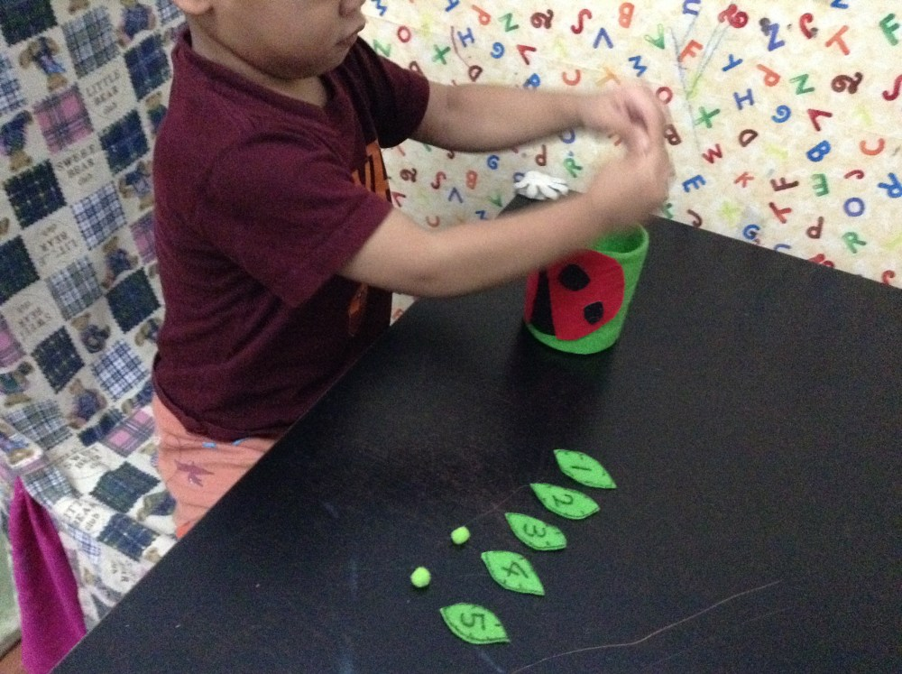 'Feed the Ladybird': Fine-Motor Activity for Toddlers (6/6)