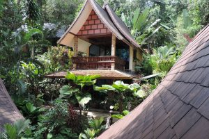 Khao Sok Las Orchideas family bungalow outside
