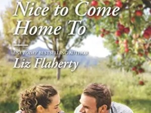 Nice to Come Home To by Liz Flahery – Preview & Guest Post
