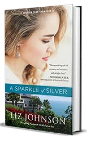 A Sparkle of Silver by Liz Johnson – Excerpt, Preview