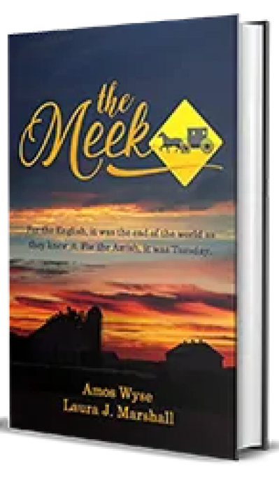 The Meek by Amos Wyse, Laura J. Marshall Book Review, Preview