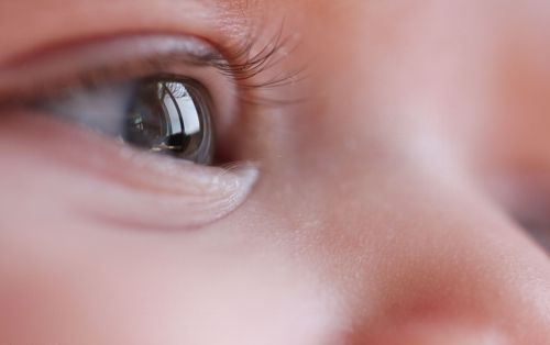vision-direct