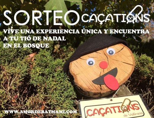 tio-de-nadal-cacations