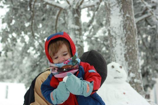nieve-rasos