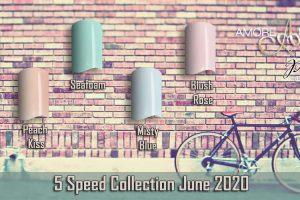 FX Five Speed 2020