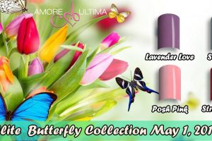 PE Butterfly Coll 2019