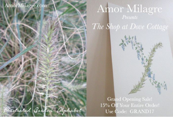 Amor Milagre Grand Opening Sale 15% Artwork, Stationery, Custom Gifts, Organic Apparel and Vegan Recipes, Educational Tools, Art & Story Writing Classes & Clubs, Baby, Child, and More! amormilagre.com Illustrated Garden Alphabet Letters