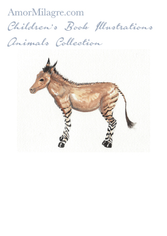 Amor Milagre Children's Book Animals Illustrations The Zonkey beautiful for all spaces and ages, especially in a nursery amormilagre.com