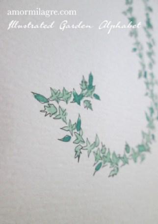 Illustrated Garden Alphabet Letter I-d Amor Milagre amormilagre.com
