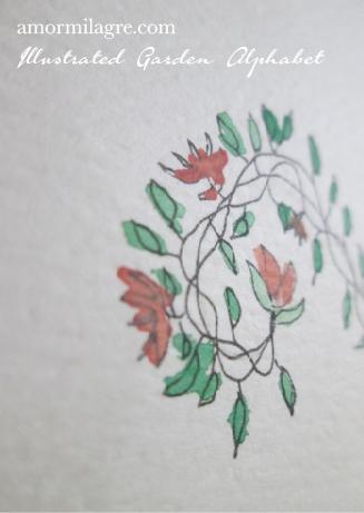 Illustrated Garden Alphabet Letter V-d Amor Milagre amormilagre.com