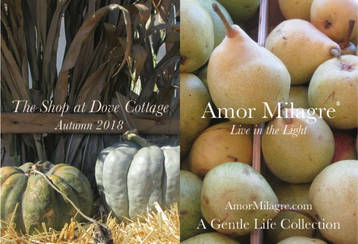 Amor Milagre The Shop at Dove Cottage Baby & Child Collection Autumn Fall 2018 Art Design Books Healthy Organic Life Apparel Baby & Child Organic Nursery Toys amormilagre.com