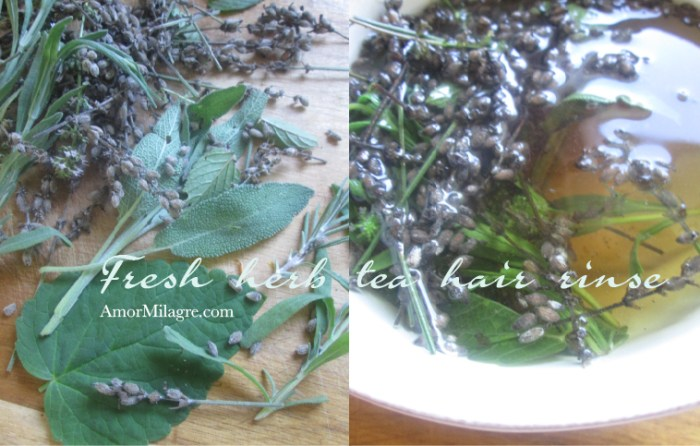 Amor Milagre Fresh Garden Herb Tea Hair Rinse Organic Vegan Non-Toxic natural beauty Recipe amormilagre.com
