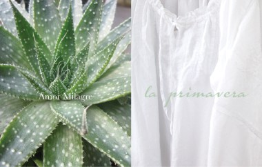 Amor Milagre Ethical Spring Collection primavera plants white poet nightgown 2019 Custom Design Art Gallery Organic Vegan Gifts Baby & Child amormilagre.com