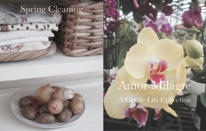 Amor Milagre Spring Cleaning 2019 Pleasures for the Weekend, Ethical Handmade Gift Shop Design Art Apparel Organic Vegan Baby & Child home interior design amormilagre.com