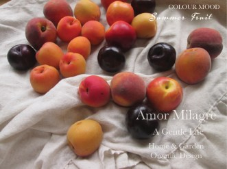 Amor Milagre Summer Fruit Peach Apricot Plum Colour Mood Organic Home & Garden Fashion Personal Style 2019 Ethical Handmade Gift Shop Art Apparel Organic Vegan Baby & Child design amormilagre.com